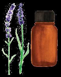 essential-oil-5248749_1920