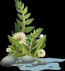 flowers-34592_1280